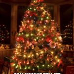 Christmas Tree | I DIDN'T GROW UP WITH CHRISTMAS TRADITIONS CAN ANYONE TELL ME WHAT'S SO SPECIAL ABOUT A PINE TREE WITH LIGHTS ON IT? | image tagged in christmas tree | made w/ Imgflip meme maker