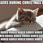 Anyone relate? | TEENAGERS DURING CHRISTMAS BREAK BORED BORED BORED BORED BORED BORED BORED BORED BORED BORED BORED BORED BORED BORED BORED BORED BORED BORED | image tagged in bored keyboard cat,bored,teenagers,christmas | made w/ Imgflip meme maker