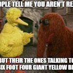Big Bird And Snuffy Meme | PEOPLE TELL ME YOU AREN'T REAL.. BUT THEIR THE ONES TALKING TO A SIX FOOT FOUR GIANT YELLOW BIRD. | image tagged in memes,big bird and snuffy | made w/ Imgflip meme maker
