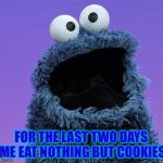cookie monster | FOR THE LAST TWO DAYS ME EAT NOTHING BUT COOKIES | image tagged in cookie monster,true story,true story bro | made w/ Imgflip meme maker