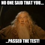 Gandalf - you shall not pass | NO ONE SAID THAT YOU.... ...PASSED THE TEST! | image tagged in gandalf - you shall not pass | made w/ Imgflip meme maker