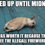 totally worth it | I STAYED UP UNTIL MIDNIGHT... IT WAS WORTH IT BECAUSE THEN I GOT TO SEE THE ILLEGALL FIREWORKS GO OFF | image tagged in tired dog | made w/ Imgflip meme maker