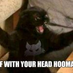 Cat With Guns | OFF WITH YOUR HEAD HOOMAN! | image tagged in cat with guns | made w/ Imgflip meme maker