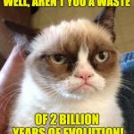 Grumpy Cat Reverse Meme | WELL, AREN'T YOU A WASTE OF 2 BILLION YEARS OF EVOLUTION! | image tagged in memes,grumpy cat reverse,grumpy cat | made w/ Imgflip meme maker