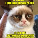 Grumpy Cat Reverse Meme | IF YOU ARE LOOKING FOR SYMPATHY IT IS IN THE DICTIONARLY AND LOCATED BETWEEN SHIT AND SYPHILIS. | image tagged in memes,grumpy cat reverse,grumpy cat | made w/ Imgflip meme maker