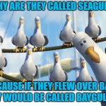 Finding Nemo Seagulls | ??WHY ARE THEY CALLED SEAGULLS?? BECAUSE IF THEY FLEW OVER BAYS THEY WOULD BE CALLED BAYGULLS !!! | image tagged in finding nemo seagulls | made w/ Imgflip meme maker