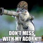Bazooka Squirrel Meme | DON'T MESS WITH MY ACORN!!! | image tagged in memes,bazooka squirrel | made w/ Imgflip meme maker