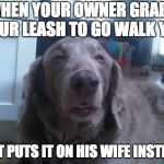Dog Owner's Wife | WHEN YOUR OWNER GRABS YOUR LEASH TO GO WALK YOU BUT PUTS IT ON HIS WIFE INSTEAD | image tagged in memes,high dog | made w/ Imgflip meme maker
