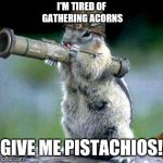 Bazooka Squirrel Meme | I'M TIRED OF GATHERING ACORNS GIVE ME PISTACHIOS! | image tagged in memes,bazooka squirrel | made w/ Imgflip meme maker