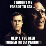 Will Ferrell Meme | I TAUGHT MY PARROT TO SAY . . . HELP ! , I'VE BEEN TURNED INTO A PARROT ! | image tagged in memes,will ferrell,parrot,taught,help,sarcasm | made w/ Imgflip meme maker