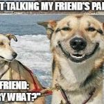 "Original Stoner Dog Meme | SWEET TALKING MY FRIEND'S PARENTS MY FRIEND: ""SORRY WHAT?"" 
