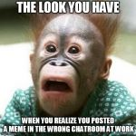 Shocked Monkey | THE LOOK YOU HAVE WHEN YOU REALIZE YOU POSTED A MEME IN THE WRONG CHATROOM AT WORK | image tagged in shocked monkey | made w/ Imgflip meme maker