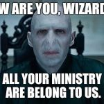Lord Voldemort | HOW ARE YOU, WIZARDS? ALL YOUR MINISTRY ARE BELONG TO US. | image tagged in lord voldemort | made w/ Imgflip meme maker