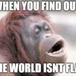 Monkey OOH Meme | WHEN YOU FIND OUT THE WORLD ISNT FLAT | image tagged in memes,monkey ooh | made w/ Imgflip meme maker