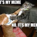 That's my meme.... | IT'S MY MEME NO, IT'S MY MEME | image tagged in two cats fighting for real,my meme cat fight | made w/ Imgflip meme maker