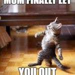 Cool Cat Stroll Meme | WHEN YOUR MOM FINALLY LET YOU OUT BY YOUR SELF | image tagged in memes,cool cat stroll | made w/ Imgflip meme maker