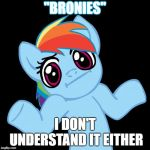 "Pony Shrugs Meme | ""BRONIES"" I DON'T UNDERSTAND IT EITHER 