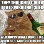 Funny Cat Birthday | SO THEY THOUGHT I COULD'NT FIND THE SPARKLING CIDER AYE WELL GUESS WHAT..I DIDN'T FIND THE CIDER BUT I SURE DID FIND THE WINE | image tagged in funny cat birthday | made w/ Imgflip meme maker