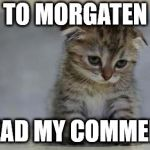 Sad kitten | TO MORGATEN READ MY COMMENT | image tagged in sad kitten | made w/ Imgflip meme maker