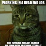 Depressed Cat Meme | WHEN YOU REALIZE THAT YOU ARE WORKING IN A DEAD END JOB BUT YOU HAVE ALREADY SHARED ALL YOUR IDEAS THAT HAVE LITERALLY SAVED YOUR COMPANY AL | image tagged in memes,depressed cat | made w/ Imgflip meme maker