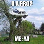 Secure Parking Meme | U A PRO? ME: YA | image tagged in memes,secure parking | made w/ Imgflip meme maker
