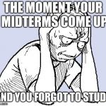 stressed meme | THE MOMENT YOUR MIDTERMS COME UP AND YOU FORGOT TO STUDY | image tagged in stressed meme | made w/ Imgflip meme maker