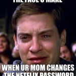 crying peter parker | THE FACE U MAKE WHEN UR MOM CHANGES THE NETFLIX PASSWORD | image tagged in crying peter parker | made w/ Imgflip meme maker