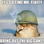 War Cat | IT'S GO TIME MR. FLUFFY BRING OUT THE BIG GUNS! | image tagged in war cat | made w/ Imgflip meme maker