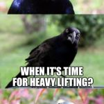 bad pun crow | YOU KNOW WHAT WE DO WE CALL IN THE CRANES WHEN IT'S TIME FOR HEAVY LIFTING? | image tagged in bad pun crow,bird weekend | made w/ Imgflip meme maker
