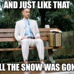 Forrest Gump | AND JUST LIKE THAT ALL THE SNOW WAS GONE | image tagged in forrest gump | made w/ Imgflip meme maker