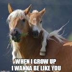 Foal Of Mine Meme | WHEN I GROW UP I WANNA BE LIKE YOU | image tagged in memes,foal of mine | made w/ Imgflip meme maker