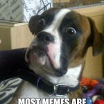 what have we become? | WHEN YOU REALISE MOST MEMES ARE JUST MODERN DAD JOKES | image tagged in blankie the shocked dog,dad joke | made w/ Imgflip meme maker