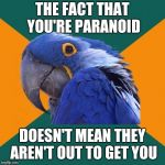 Paranoid Parrot Meme | THE FACT THAT YOU'RE PARANOID DOESN'T MEAN THEY AREN'T OUT TO GET YOU | image tagged in memes,paranoid parrot | made w/ Imgflip meme maker