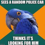 Paranoid Parrot Meme | SEES A RANDOM POLICE CAR THINKS IT'S LOOKING FOR HIM | image tagged in memes,paranoid parrot | made w/ Imgflip meme maker