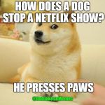 Doge 2 Meme | HOW DOES A DOG STOP A NETFLIX SHOW? HE PRESSES PAWS @DadJokesnMemes | image tagged in memes,doge 2 | made w/ Imgflip meme maker