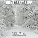 Here's a meme entry for Forrest Gump week | RUN FOREST RUN! OH WAIT. | image tagged in snowy forest,forrest gump week,forest,memes | made w/ Imgflip meme maker