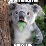 Surprised Koala Meme | WHEN THE CHOIR DIRECTOR GIVES THE ALTOS A COMPLIMENT | image tagged in memes,surprised koala | made w/ Imgflip meme maker