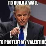 Donald trump | I'D BUILD A WALL TO PROTECT MY VALENTINE! | image tagged in donald trump | made w/ Imgflip meme maker