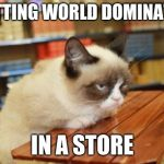 Grumpy Cat Table Meme | PLOTTING WORLD DOMINATION IN A STORE | image tagged in memes,grumpy cat table,grumpy cat | made w/ Imgflip meme maker