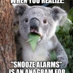 "Surprised Koala Meme | THAT MOMENT WHEN YOU REALIZE: ""SNOOZE ALARMS"" IS AN ANAGRAM FOR ""ALAS, NO MORE Z'S."" 