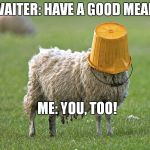 Don't be dumb | WAITER: HAVE A GOOD MEAL! ME: YOU, TOO! | image tagged in stupid sheep | made w/ Imgflip meme maker
