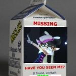Disney Princess Beauty and The Beast from MechaHearts on Etsy |Custom Milk Carton Missing Person