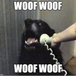 woof | WOOF WOOF WOOF WOOF | image tagged in yes this is dog,ssby | made w/ Imgflip meme maker