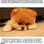 Sad puppy | THEY ALWAYS ASK WHO'S A GOOD BOY, NOT HOWS A GOOD BOY. | image tagged in sad puppy | made w/ Imgflip meme maker