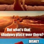 Memo To Disney: Please Stop! | EVERYTHING THE LIGHT TOUCHES IS THE LEGACY OF DISNEY ANIMATION DISNEY LIVE-ACTION REMAKES | image tagged in memes,simba shadowy place | made w/ Imgflip meme maker