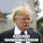 Donald Trump | IF EXPLOSIVE DIARRHEA WAS A PERSON | image tagged in donald trump | made w/ Imgflip meme maker