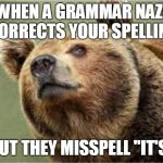 "Smug Bear Meme | WHEN A GRAMMAR NAZI CORRECTS YOUR SPELLING BUT THEY MISSPELL ""IT'S"" 