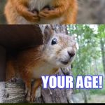 This riddle is PUN-tastic... | WHAT GOES UP AND NEVER COMES DOWN? YOUR AGE! | image tagged in bad pun squirrel,riddles and brainteasers,jokes,aging,laugh | made w/ Imgflip meme maker