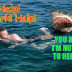 Swimming with sharks | Help! Shark! Help! YOU KNOW I'M NOT HERE TO HELP YOU | image tagged in swimming with sharks | made w/ Imgflip meme maker