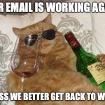 Funny Cat Birthday | OUR EMAIL IS WORKING AGAIN GUESS WE BETTER GET BACK TO WORK | image tagged in funny cat birthday | made w/ Imgflip meme maker